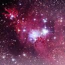 NGC 2264 The Christmas Tree Cluster,                                Moorefam
