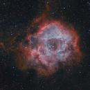 Rosette Nebula,                                Marukawa