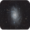 M33,                                Nippo81
