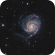 M101,                                Martin Palenik
