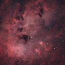 IC410 HOO,                                Martin Dufour