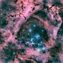 Rosette in HSO-LRGB, NGC 2237,                                Benoit Blanco