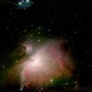 M42 The Great Orion Nebula,                                Bernd Neumann