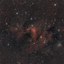 SH2-155 Cave Nebula,                                Alessandro Curci
