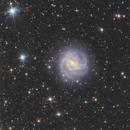 M83 wide field,                                Daniele Gasparri