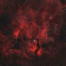 Cygnus - wide field.,                                Marvaz