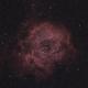 Skull Nebula,                                Tony
