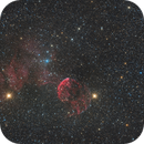 IC 443_ The Jellyfish,                                Gabriel Siegl