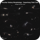 Peculiar Galaxy Morphology – Superlong Tidal Tails,                                Gary Imm