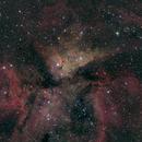 Eta Carinae nebula,                                Gary Plummer