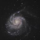 M101,                                Scott