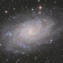 The Triangulum Star Cloud,                                Tudor Chibacu