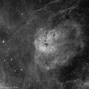 IC410 - The Tadpoles,                                Richard Bratt
