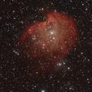 Sh2-252 - Monkey Head nebula,                                Matteo Ambrosi