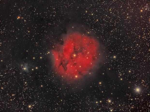 IC5146 Cocoon Nebula,                                niteman1946