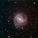 M83 Southern Pinwheel Galaxy,                                Wayne Stronach