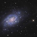 NGC2403,                                Florian APPERT