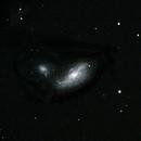Cocoon Galaxies,                                Stewart