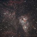 Eta Carinae Nebula - NGC 3372 - My First Telescope DSO Image,                                Gabriel R. Santos (grsotnas)