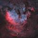 """Sh2-171 - NGC 7822 in """"Natural"""" Palette,                                Alan Pham"""