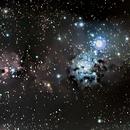 Cone nebula, Christmas Tree cluster NGC2264 ,                                floreone