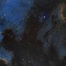 North American Nebula and Pelican Nebula Mosaic,                                Barry Wilson