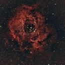 Rosette Nebula NGC 2237 ,                                Antonio Bonanno
