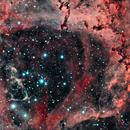 NGC2244 Rosette Nebula,                                John Rathbun