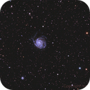 M101 Pinwheel galaxy,                                Ivan Bosnar