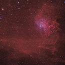 Flaming Star Nebula,                                Paweł Radomski