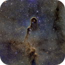 Elephant Trunk Nebula (IC 1396A),                                Ara