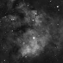 NGC 7822,                                Dan Shallenberger