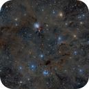 NGC1333 and Dusty Surroundings,                                Markus Bauer