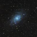 M33 Galaxy,                                Nikola Nikolov