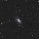 NGC 2403,                                Hakan Midik