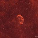 NGC 6888 in Ha,                                David Newbury