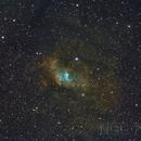 NGC 7635 Hubble Palette,                                Emilio Zandarin