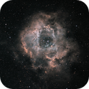 The Rosette Nebula, Caldwell 49,                                Steven Bellavia