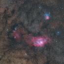 M8 M20 Widefield,                                MakikoSugimura