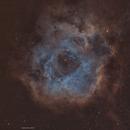 First light for my new scope !! Rosette nebula,                                John