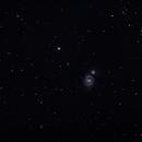 M 51 - Whirlpool-Galaxie / Whirlpool Galaxy,                                Markus Adamaszek