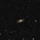 Spiral Galaxy NGC2903,                                KiwiAstro