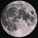 Blue Moon,                                Rich Taylor