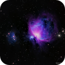 Orion Nebula,                                Sasho Panov