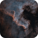 NGC7000 - The Wall of the North America Nebula in HA and OIII,                                Bradicus