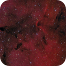 IC 1396,                                Barry Wilson