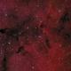 IC 1396,                                Barry Wilson