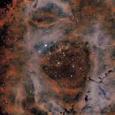 Rosette nebula, bicolor,                                kskostik