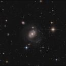 NGC 4151,                                sky-watcher (johny)