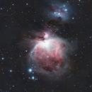 M42 and The Running Man Nebula,                                matar